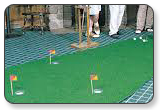Big Moss Augusta Pro Putting & Chipping Green 4' x 15'