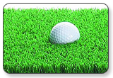 Club Champ Dual Height Turf Mat
